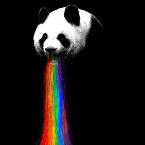 loansolutions nicebleed panda